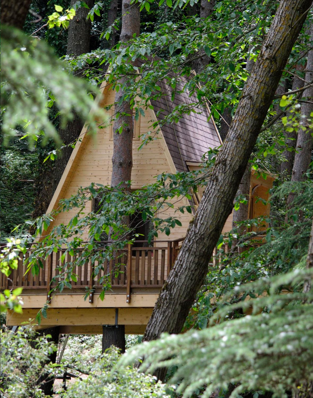 Tree House La Terrazza sul Lago